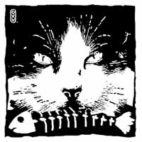 Tienda Solidaria Proyecto Gato